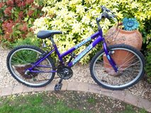 Purple Probike Vixen in Lakenheath, UK