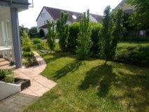 TLA, petfriendly - 2, 3 and 4 bdr apartments in Weilerbach / Ramstein in Ramstein, Germany