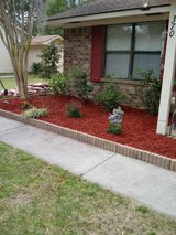 Retired Marine / Lawn care and landscaping in Beaufort, South Carolina