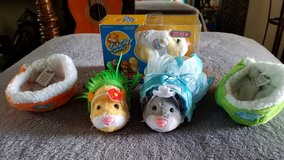 Zhu Zhu Pets Set in Fort Campbell, Kentucky