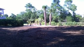 Land Clearing, Bush Hogging, Mulching, Road Construction & Excavating Services - Wilmington NC in Wilmington, North Carolina