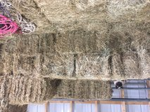 Excellent horse hay Square bales of mixed  grass and alfalfa in Fort Leonard Wood, Missouri