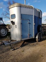 Ifor williams 505 horse trailer with Aluminium floor in Lakenheath, UK