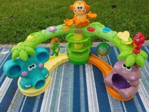 Monkey activity toy in Spring, Texas