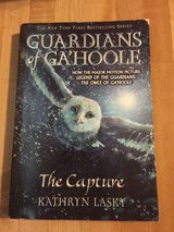 pB Guardians if Gahoole by Scholastic in Spring, Texas