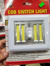 COB Switch Light in Yucca Valley, California