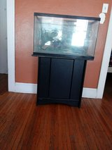 Large fish tank and stand in Joliet, Illinois