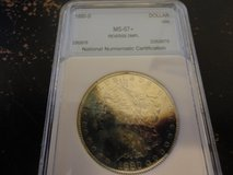 1880 s ms 67+ reverse DMPL morgan dollar rainbow toned listed at $10,000.00 in Fort Campbell, Kentucky