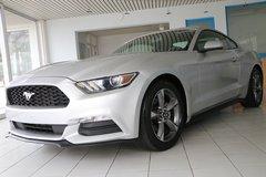 2016 FORD Mustang V6, Autom., 1 Owner, Ford WARRANTY, like NEW! in Spangdahlem, Germany