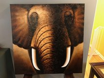Elephant Painting in Elgin, Illinois