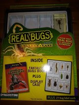 Real Bugs collect A case in Spring, Texas