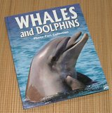 Whales & Dolphins Photo Fact Collection Over Sized Hard Cover Book in Chicago, Illinois