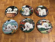 Danbury Mint Bishons Frise Plate Collection in Great Lakes, Illinois