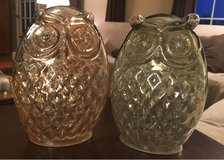Glass Owls in Yorkville, Illinois
