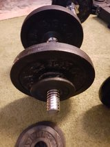 WEIGHTS = Isometrics, Barbells and Dumbells == WEIGHTS in Ramstein, Germany
