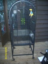 parrot cage in Lakenheath, UK