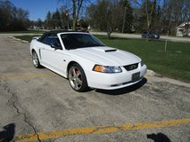 Ford Mustang GT Convertable in Westmont, Illinois