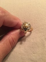 Turtle ring in Conroe, Texas