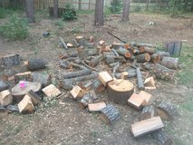 Free firewood in Warner Robins, Georgia