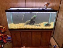 75 gallon fish tank with everything in Fort Polk, Louisiana