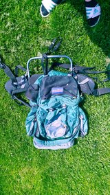 Hiking backpack in Chicago, Illinois