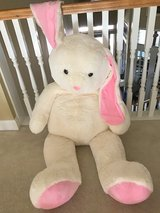 HUGE bunny- new in Houston, Texas