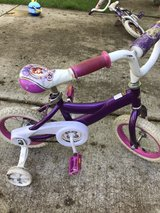 Sofia the First bike in Lockport, Illinois