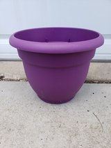 Plastic Planter Pot in Oswego, Illinois