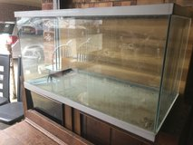 30 inch Aquarium in Lakenheath, UK
