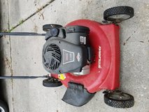 Lawn mower in Kingwood, Texas