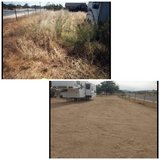 Need your Yard Cleaned in 29 Palms, California