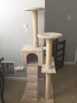 Cat Tower in Naperville, Illinois