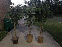 3 Artifical Trees Sold together in Fort Knox, Kentucky