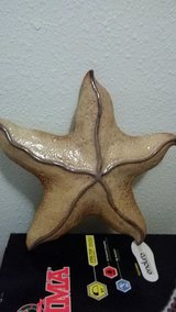 Beautiful Hanging 12x12 Starfish in Byron, Georgia