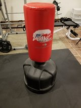 Century Wave Master Punching Bag in Joliet, Illinois