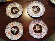 Hummingbird plates in St. Charles, Illinois
