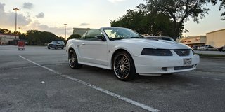 01 ford mustang on 20in staggered rims in Bellaire, Texas