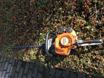 Hedge Clipper in Spangdahlem, Germany
