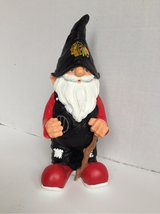 Blackhawks Gnome in Glendale Heights, Illinois