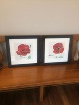 2 Framed Wall Art Pictures in St. Charles, Illinois