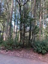 Come build your dream house on this vacant lot in the Gated Clearwood community in Yelm, WA in Fort Lewis, Washington