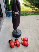 Everlast boxing plus gloves in Fort Campbell, Kentucky