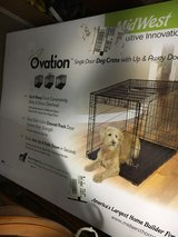 XL Midwest Ovation Dog Crate in Shorewood, Illinois
