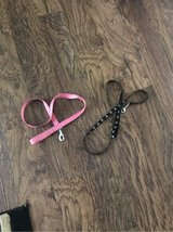 dog leashes in Fort Campbell, Kentucky