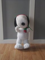 Holliday Snoopy in Tinley Park, Illinois
