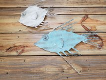 3D 2 Fish wall art in Camp Lejeune, North Carolina