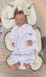 Reborn Life like Baby in Orland Park, Illinois