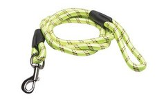 Green 6' Dog Leash in Plainfield, Illinois