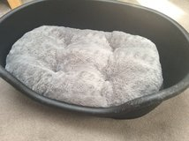 Dog bed and cushion in Lakenheath, UK