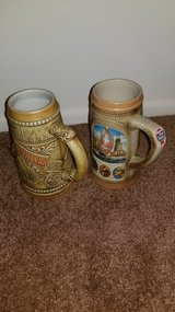 2 Collectable Beer Steins in Elgin, Illinois